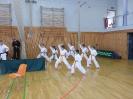 Bayerische Meisterschaft im JKA Karate 2015 0_17