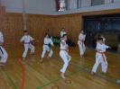 Bayerische Meisterschaft im JKA Karate 2015 0_18