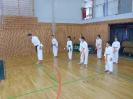 Bayerische Meisterschaft im JKA Karate 2015 0_19