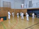 Bayerische Meisterschaft im JKA Karate 2015 0_21