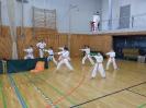 Bayerische Meisterschaft im JKA Karate 2015 0_22