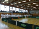Bayerische Meisterschaft im JKA Karate 2015 0_25
