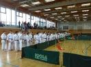 Bayerische Meisterschaft im JKA Karate 2015 0_26