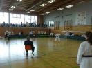 Bayerische Meisterschaft im JKA Karate 2015_13