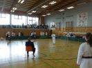 Bayerische Meisterschaft im JKA Karate 2015_14