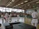 Bayerische Meisterschaft im JKA Karate 2015_15