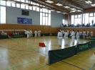 Bayerische Meisterschaft im JKA Karate 2015_16