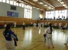 Bayerische Meisterschaft im JKA Karate 2015_24