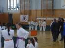 Bayerische Meisterschaft im JKA Karate 2015_26