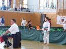Bayerische Meisterschaft im JKA Karate 2015_28