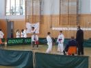 Bayerische Meisterschaft im JKA Karate 2015_30