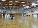 Bayerische Meisterschaft im JKA Karate 2015_34