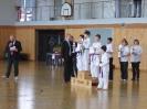 Bayerische Meisterschaft im JKA Karate 2015_37