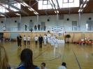 Bayerische Meisterschaft im JKA Karate 2015_39